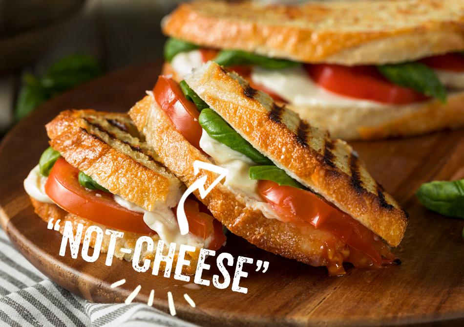 cheese-mozzarella