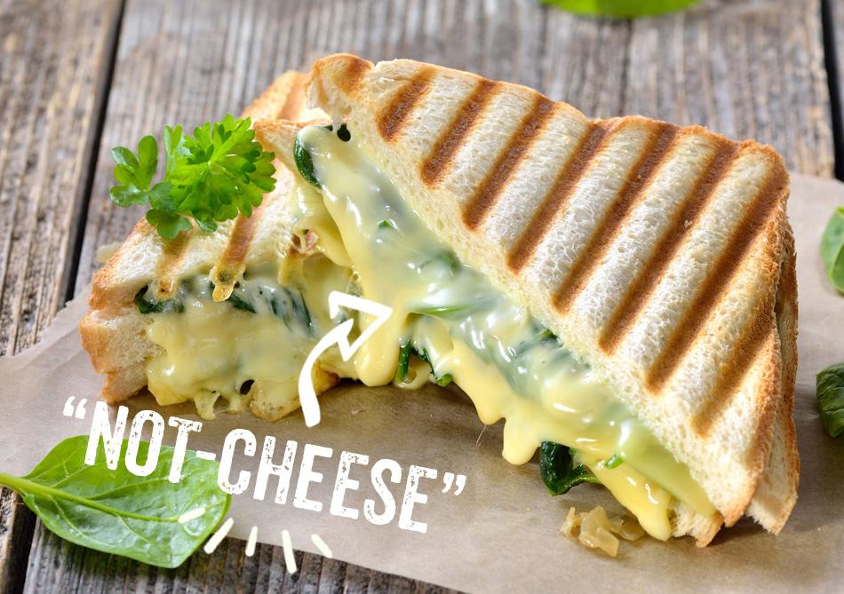 cheese-swiss
